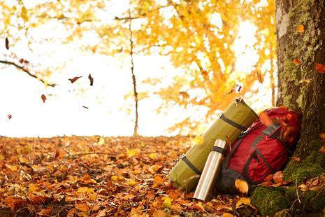 Wandern im Herbst | © Jonas Ingman