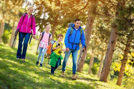 Familie mit 2 Kindern geht wandern im Wald