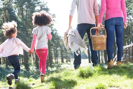 eine Familie macht Picknick im Grünen