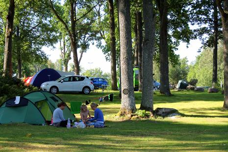 Camping auf der Zeltwiese unter Bäumen - Skotteksgarden