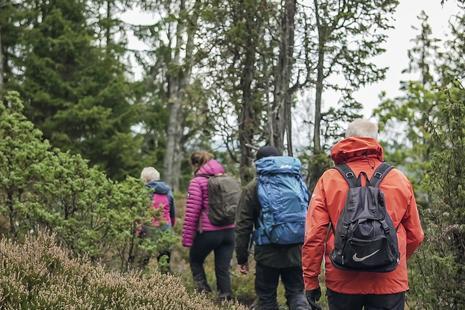 Wandern Gruppe Åsundenleden