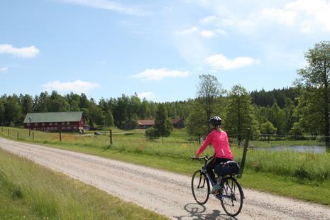 Radfahren in der wunderschönen Natur