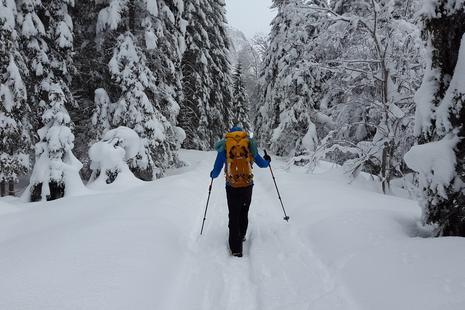 Winterwandern im Schnee