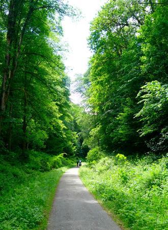 Autofreier Fahrradweg durchs Grüne